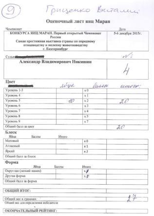Виталий Гриценко республика Беларусь MCR