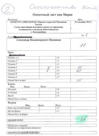 Юлия Серебренникова MCR