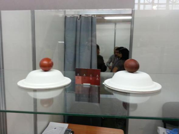 """Экспозиция яйца Маран победителей в номинации """"самое тёмное яйцо"""" и """"самое красивое яйцо"""""""