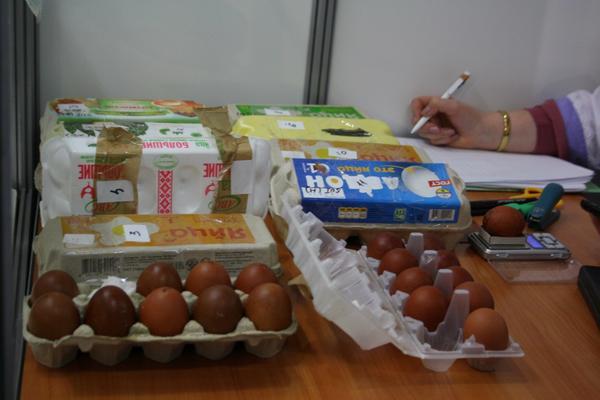 Конкурсное яйцо Маран, эксперт ВОЛП, Никишина Е.А. за работой